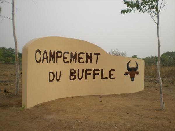 campement du buffle au burkina faso chasse et safari photo